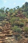 Kings Canyon stairs